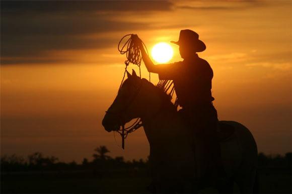 Región Orinoquía, la región de los Llanos Orientales